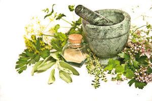 Die verwendeten Kräuterextrakte enthalten nicht nur Vitamine, Mineralstoffe und Spurenelemente, sondern vor allem pflanzliche Schutzstoffe